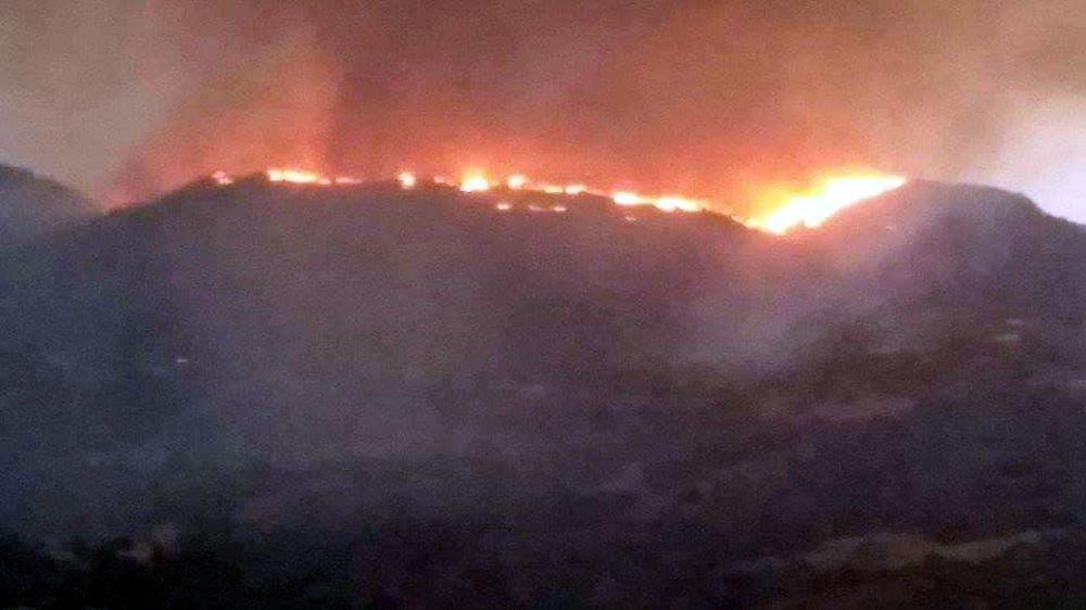 Après l'Ouest, les incendies s'emparent de l'Est de la Kabylie