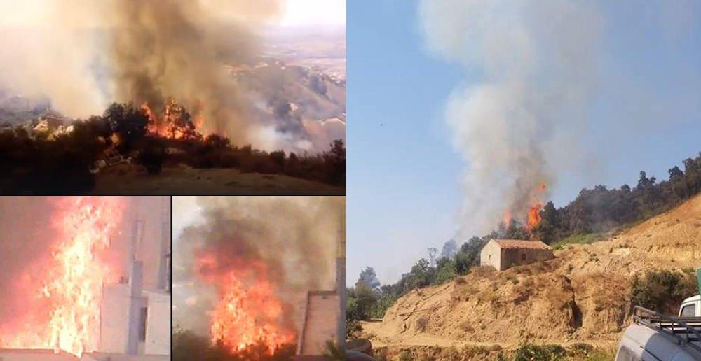Reprise des incendies en Kabylie : Saharidj, Larvaa Nat Yiraten et Iferhounène touchés