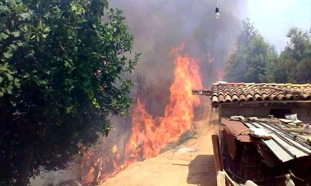 La politique de la terre brûlée du régime algérien vise à rendre la Kabylie dépendante d'Alger