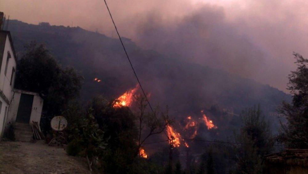 Qui est derrière les derniers départs simultanés de plusieurs feux de forêts en Kabylie ?