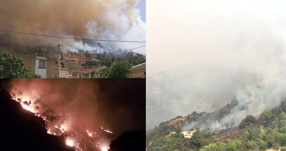 Mekla en feu toute la journée d'hier : des centaines d'oliviers calcinés et des habitations touchées