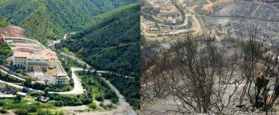 La Kabylie incendiée : le pouvoir colonial algérien est au moins complice