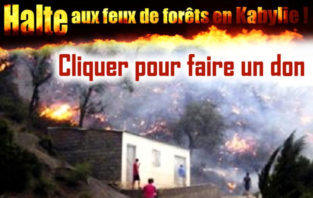 Kabylie incendiée : L'Anavad lance la campagne de dons pour venir en aide aux sinistrés
