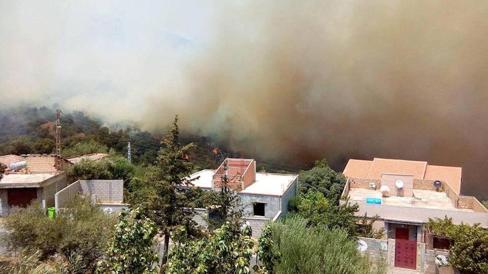 SOS feux ravageurs : Le village Tigrine d'Ouzellaguen appelle à l'aide