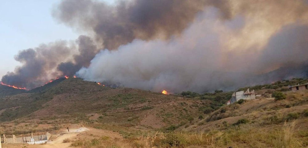 Au moins huit (08) nouvelles localités victimes d'incendies dans l'Est de la Kabylie