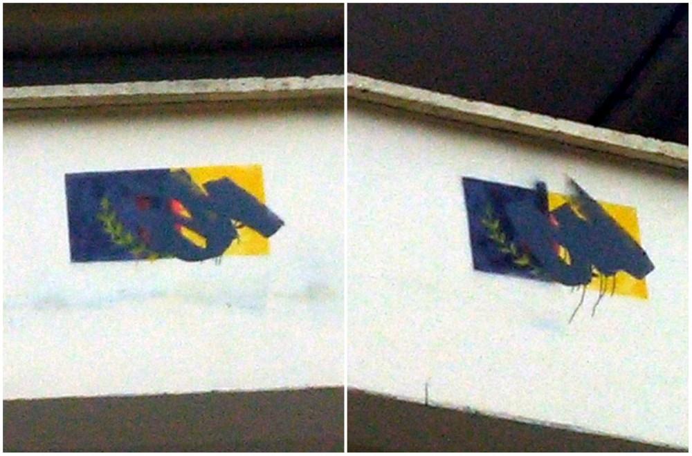 Fresques du drapeau kabyle vandalisées à Illilan
