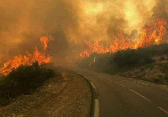 Olivier Graïne : La Kabylie brûle et nous, «khawa-khawa» avec le pyromane, on va ailleurs