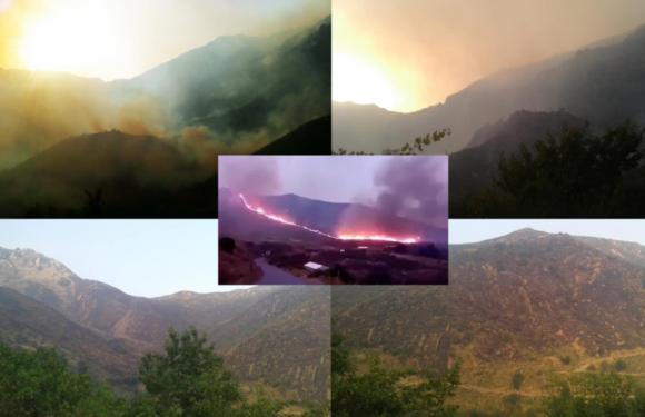 Le massif du Djurdjura en danger : Gigantesque brasier dans les montagnes d'Iwaquren