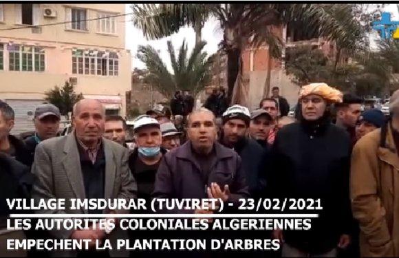 LE SOUS-PRÉFET COLONIAL D'IMECHDALEN REFUSE UNE PLANTATION D'ARBRES DANS LE VILLAGE IMESDOURAR
