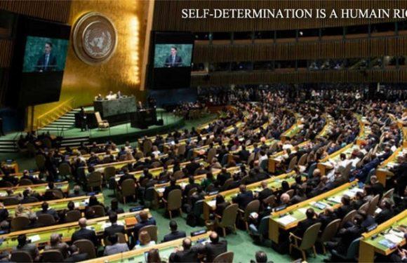L'UNPO INTERPELLE L'ONU SUR LE PRINCIPE DE L'AUTODÉTERMINATION DES PEUPLES