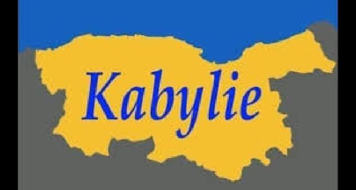LE COMITE PREPARATOIRE DE LA REUNION DES MILITANTS POLITIQUES ET DE PERSONNALITES DE LA SOCIETE CIVILE KABYLE POUR LA LIBERATION DES DETENUS POLITIQUES KABYLES ET D'OPINION, ET CONTRE LA CRIMINALISATION DE LA KABYLIE